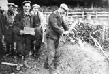 Hedge Laying Competition, Eccleshall,